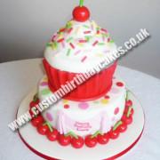 Big Giant Cupcake 2 Tier